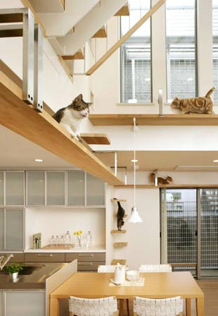 making-your-home-purrfectly-pet-friendly