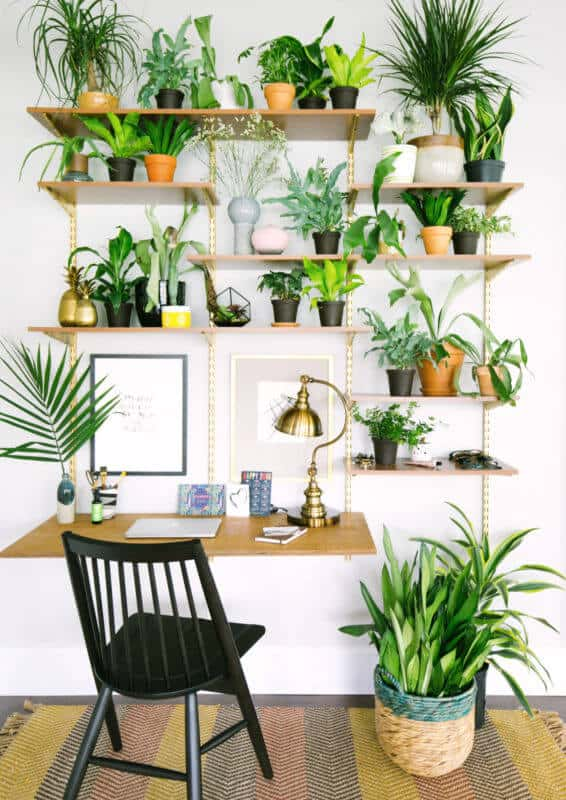What Is Eco-Friendly Interior Design?