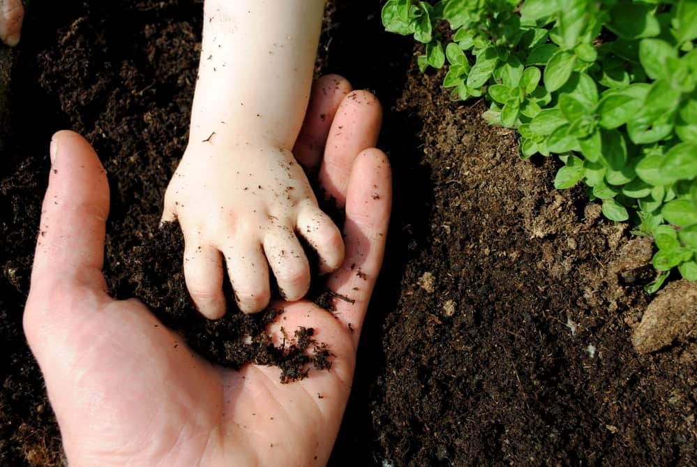 organic pest control for your garden